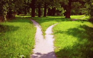 A Fork in the Road: Navigating a Career in Law & Taking Your Authentic Path