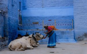 Poking the Sacred Cow: Highlighting Controversy in the Controversial